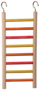 CAI 00277 Parakeet Ladder 10""