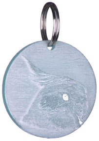 FUN 725 Cockatiel Key Chain