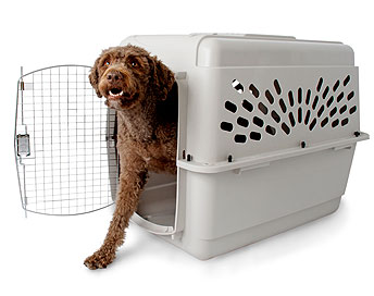 Pet Shuttle - Large Pet - XLarge