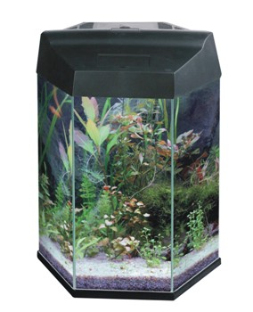 Hex 5 EC Aquarium Black - 21,7l