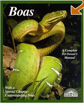 A Complete Pet Owner's Manual: Boas