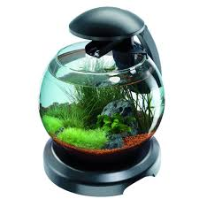 Cascade Globe Aquarium Kit 6,8L