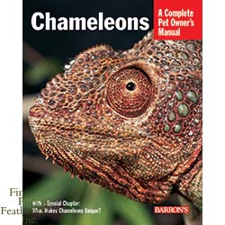 A Complete Pet Owner's Manual: Chameleons