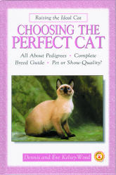 Choosing the Perfect Cat