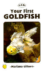 Your First Goldfish