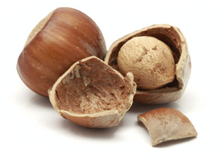 Shelled Hazelnuts 500g