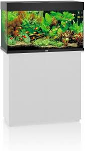 Rio 180 Aquarium - Black LED
