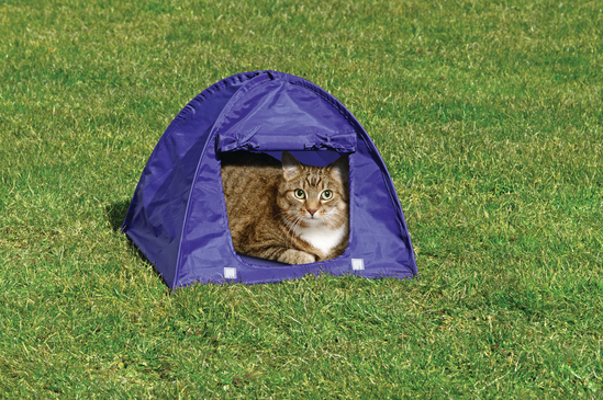 Kitty Camp Tent
