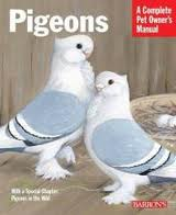 A Complete Pet Owner's Manual: Pigeons