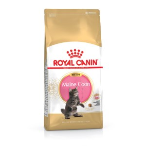 RC Maine Coon Kitten Dry Food - 4kg