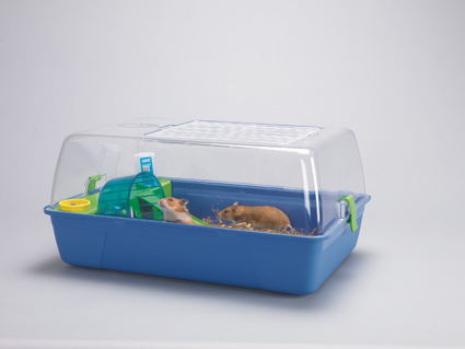 Rody Hamster Atlantic Blue