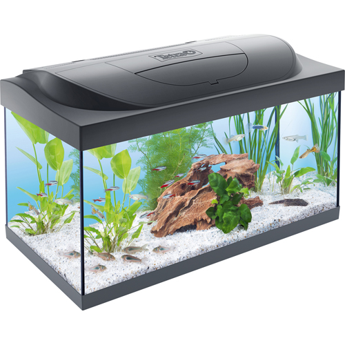 Tetra Starter Line LED Aquarium 54L