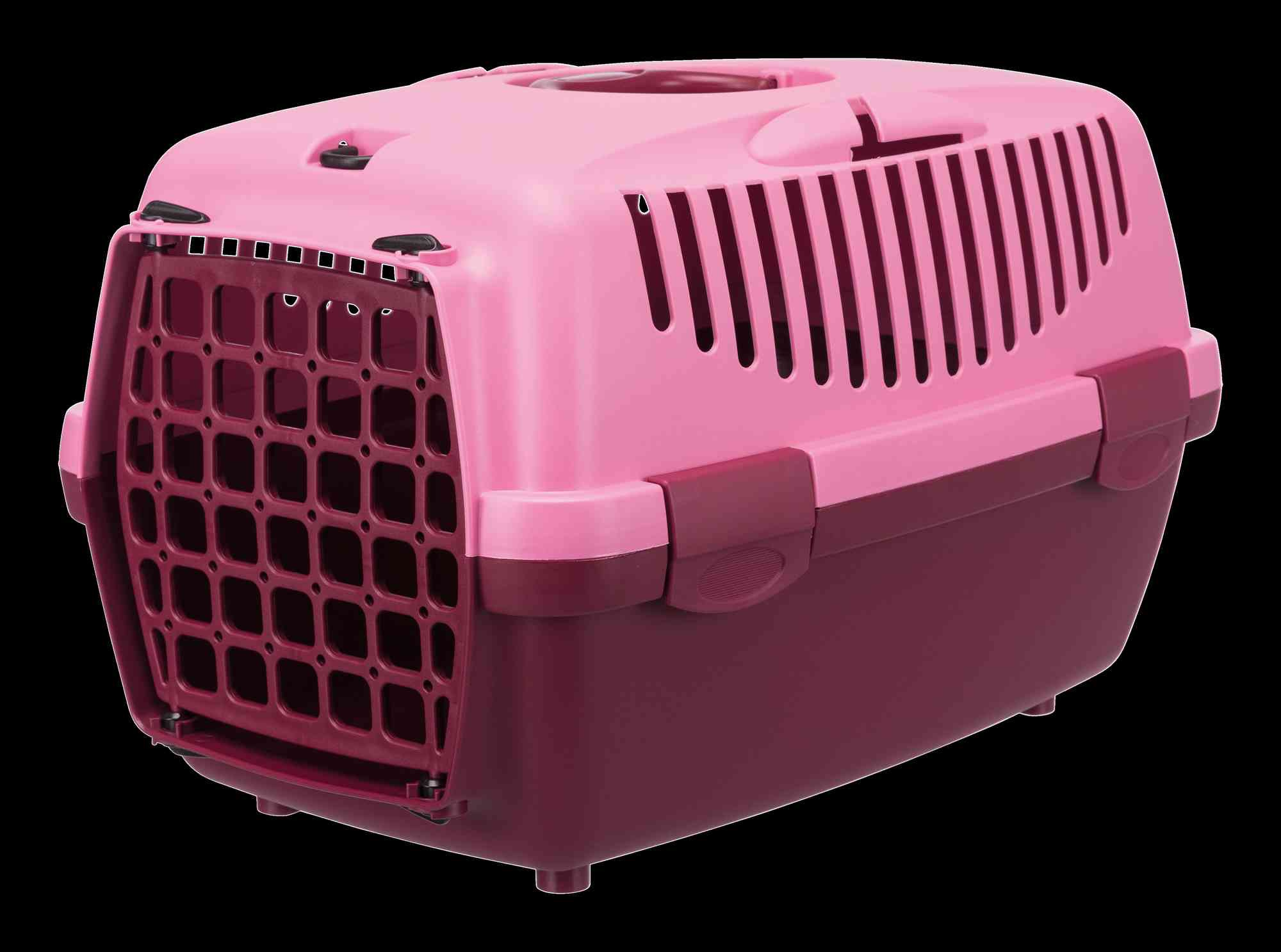 Capri 1 Transport Box XS - Pink/Berry
