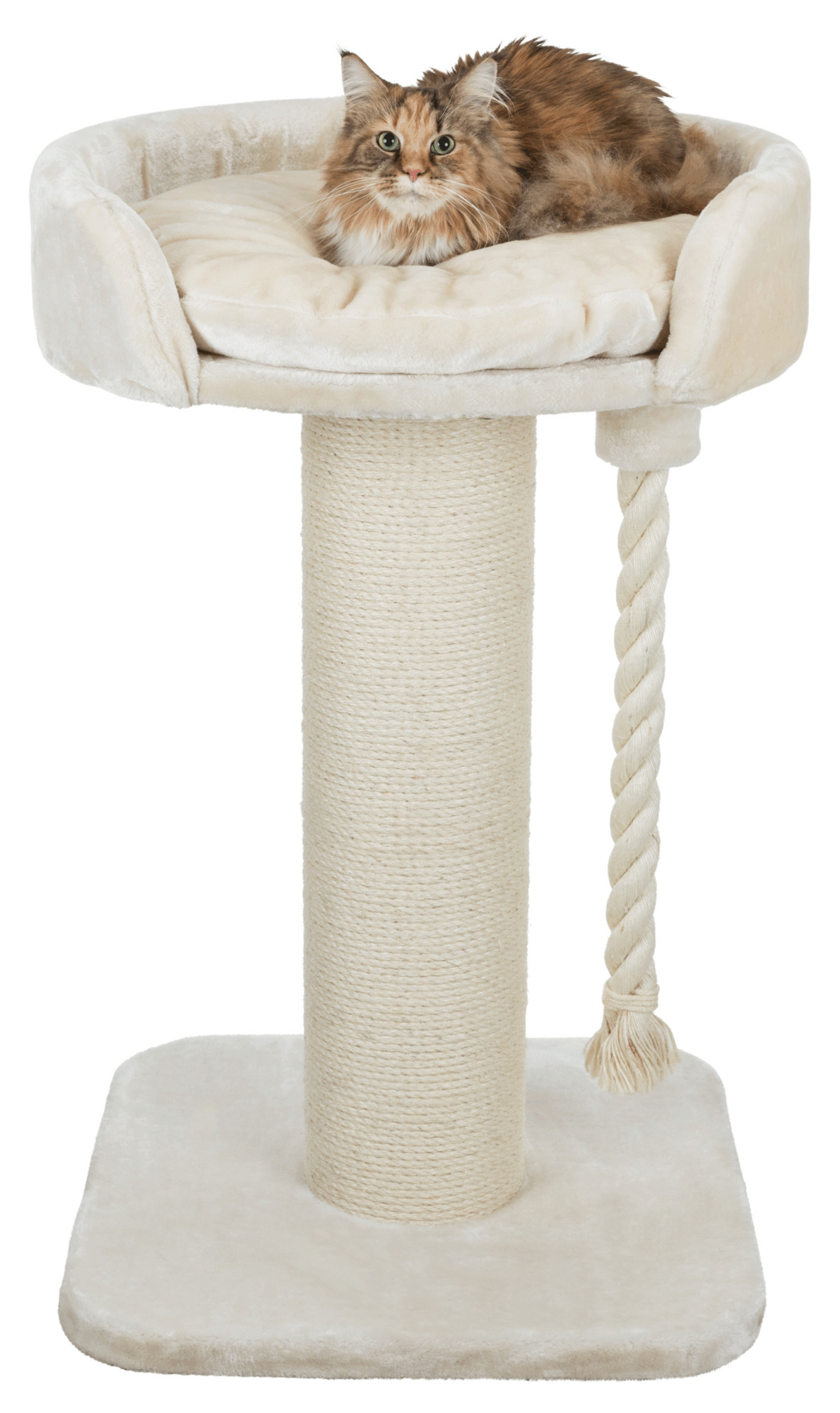 Klara Scratching Post XXL - Cream
