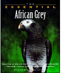 The Essential African Grey