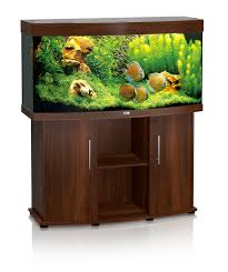 Vision 260 Aquarium - Dark Wood