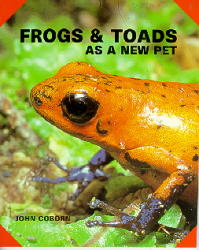 Frogs and Toads as New Pets