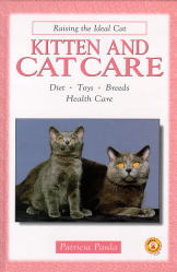 Kitten & Cat Care
