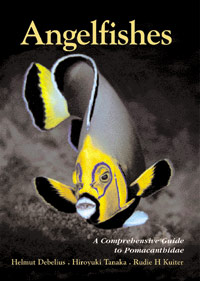 Angelfishes - A Comprehensive Guide to Pomacanthidae