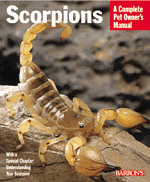 A Complete Pet Owner's Manual: Scorpions
