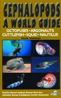 Cephalopods - A World Guide