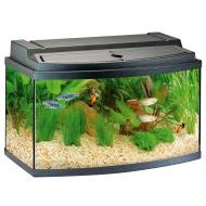 Eheim Aquabay 80 Complete Tropical Set Up - 104l