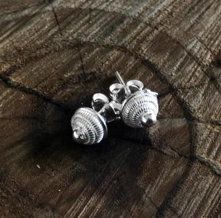 Point Model Silver Earrings