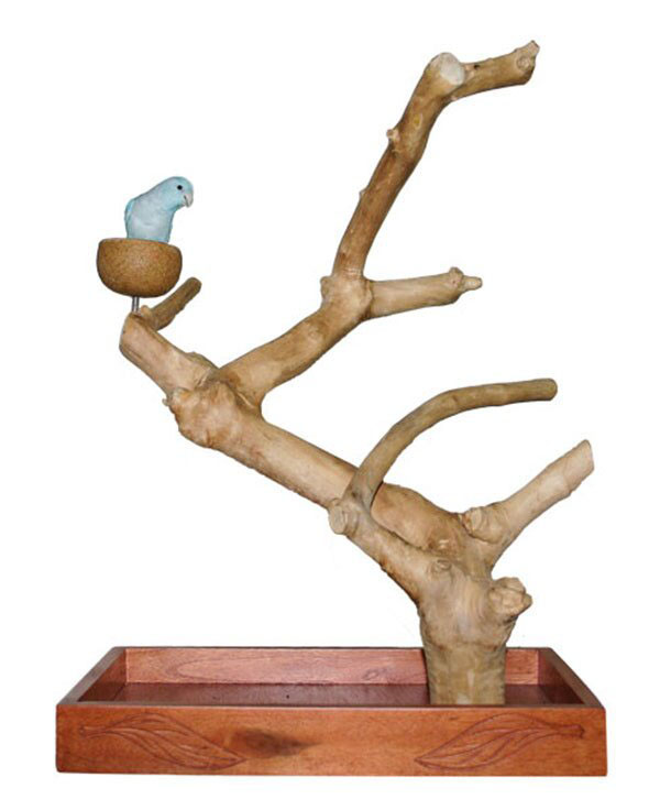 Java Tree Tabletop w/Coffee Wood S