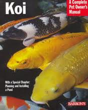 A Complete Pet Owner's Manual: Koi