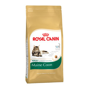 RC Maine Coon Adult Dry Food - 4kg