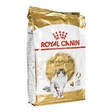 RC Norwegian Forest Cat Adult Dry Food - 10kg