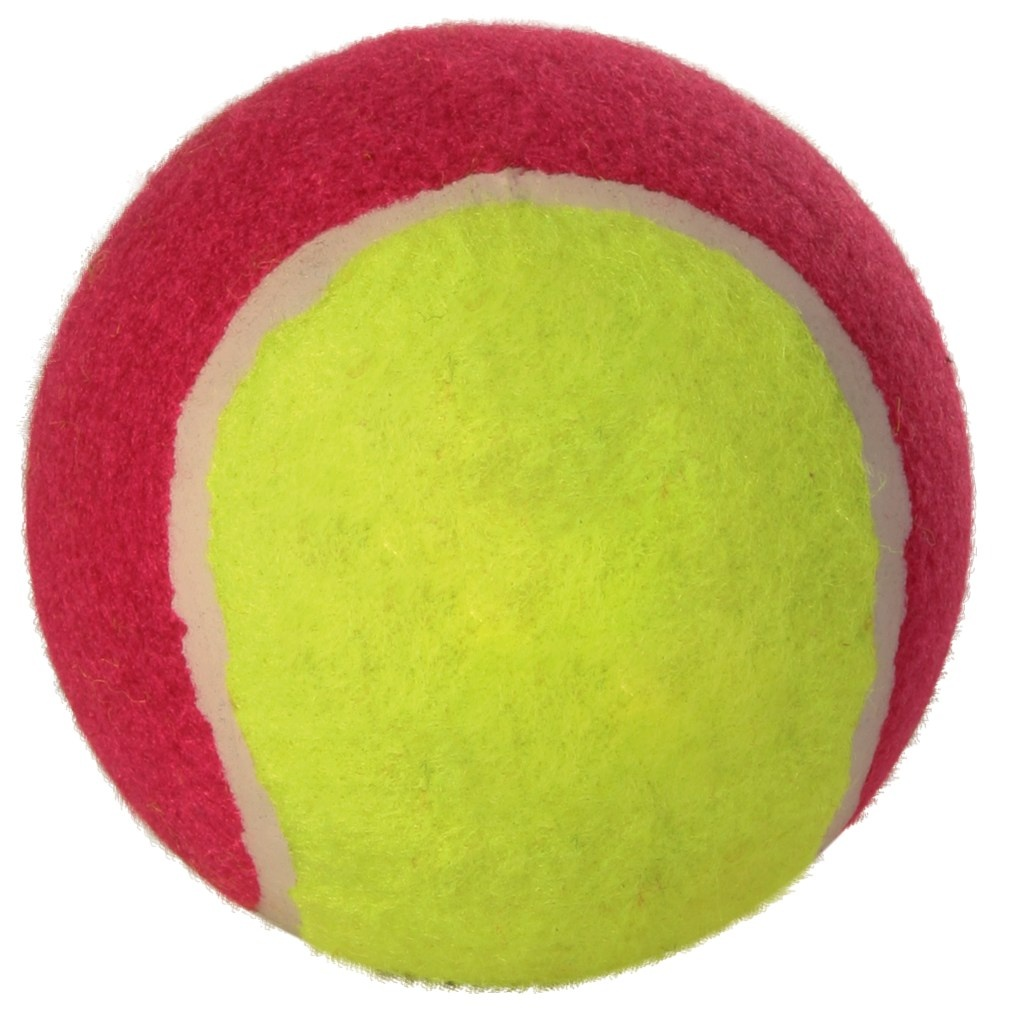 Assortment Tennis Balls 10cm - x12