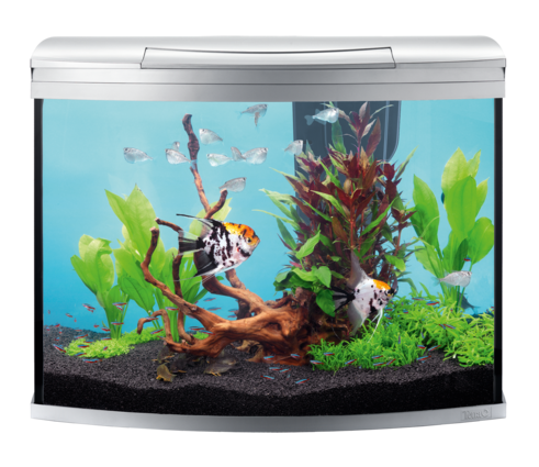 AquaArt Evolution Line Aquarium Complete 130L
